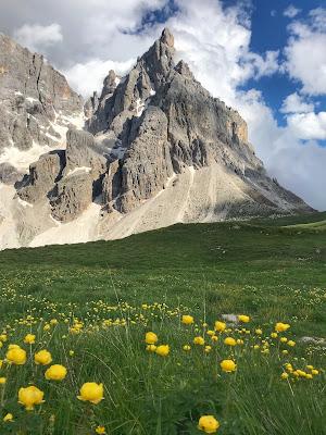 Perfettamente montagna  di Alexandra Turbatu
