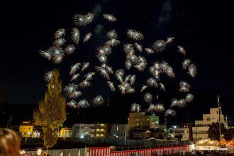 Photo: 昇曲付 ひまわり千輪菊 (静岡県 小口 昭三)