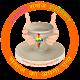 Download Prajapati Samaj For PC Windows and Mac