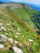 Photo: Indian Trail Ridge