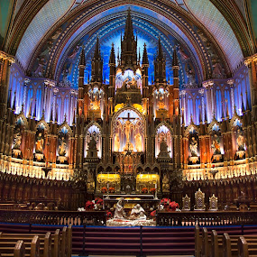 Notre Dame, Montreal by Maggie B - Buildings & Architecture Places of Worship ( history, montreal, quebec, church, canada, basilica )