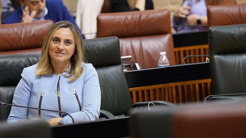 La consejera Marifrán Carazo, ayer en el Parlamento.