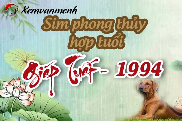xem-sim-phong-thuy-hop-tuoi-giap-tuat-1994