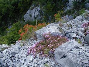 Photo: Lago di Como, 2005