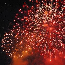 Locarno, Ticino, Switzerland by Serguei Ouklonski - Abstract Fire & Fireworks ( sky, night, dark, fireworks, event, lights )
