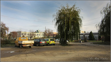 Photo: Str. Liliacului - 2016.11.05