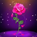 Petals Rose Falling Live Wallpaper APK