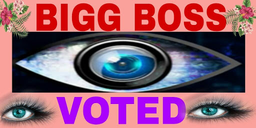 Bigg Boss Voting app (apk) free download for Android/PC/Windows