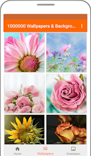 1000000 Wallpapers & Backgrounds v3.3 [Ad Free] APK 6