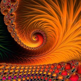 Orange fractal  by Capucino Julio - Illustration Abstract & Patterns ( abstract, orange, fractal, floral, design )