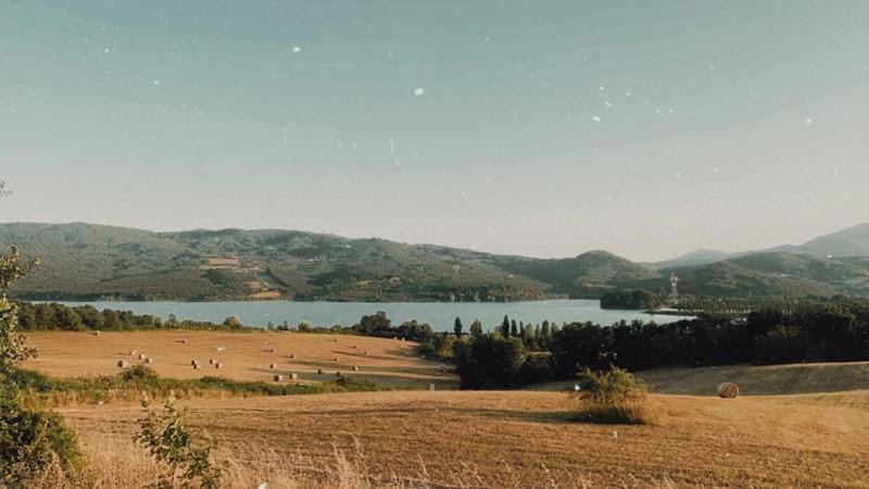 Lago di Bilancino  di nancy_miraglia