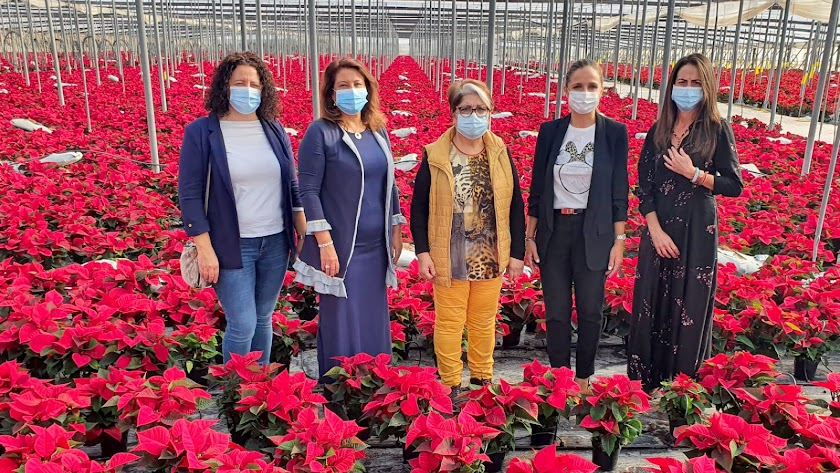 Las empresas de planta ornamental y flor cortada generan en la región 5.000 puestos de trabajo cada año