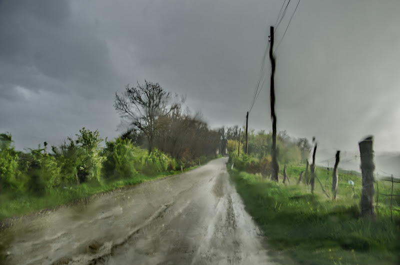 Pioggia pittorica di Marco Lorini