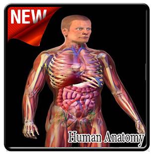 Human Anatomy - náhled