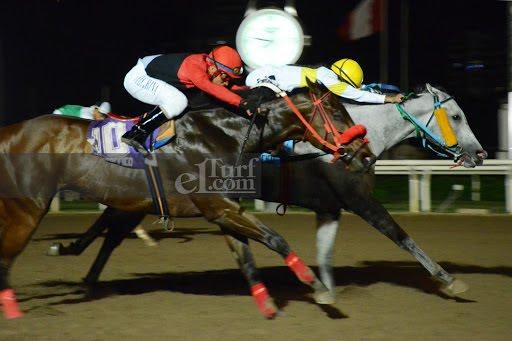 Cisalpina (Lido Palace) conquista Handicap (1000m-Arena-MONT). - Staff ElTurf.com