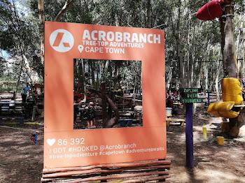 Acrobranch Constantia