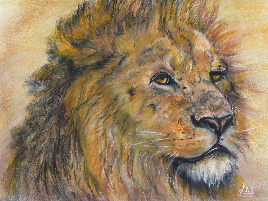 Ember the majestic lion by Linda Woodward - Painting All Painting ( lion, jungle, safari, wildlife, africa, portrait, animal )