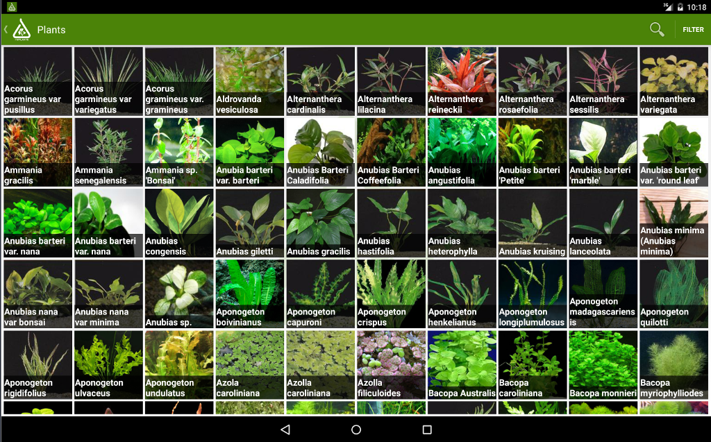 HyPlants Aquarium Plants Android Apps on Google Play