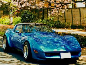 コルベット  1981年式 C3 ウレタンバンパー ワイドボディーのカスタム事例画像 冴羽  獠さんの2019年04月08日08:22の投稿