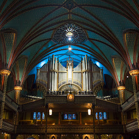 Notre Dame Basilica in Montreal by Maggie B - Buildings & Architecture Places of Worship ( montreal, quebec, notre dame, travel, basilica )