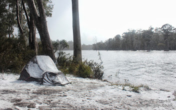 Photo: Snow while camping at Lake King William, Tasmania