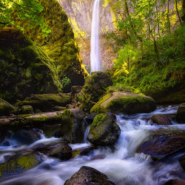 Elowah Falls by Gannon McGhee - Landscapes Waterscapes ( oregon, gorge, columbia, waterfall, falls, elowah, river )