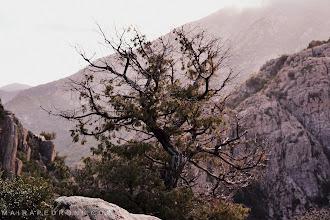 Photo: Villacidro - Sardegna www.mairapedroni.com
