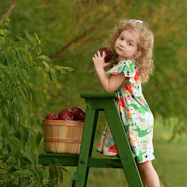 Dora in the Fall by Marie Burns - Babies & Children Child Portraits ( ladder, fall, dora, autumn, girl, apples )
