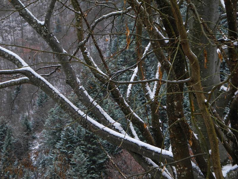 L'Inverno che aspettiamo di nessuno