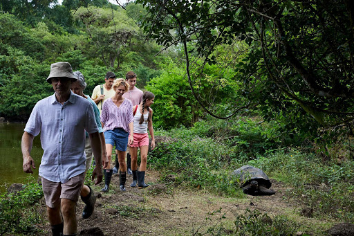 Observe ranch turtles with top naturalists on a Celebrity Flora excursion to the Galapagos.