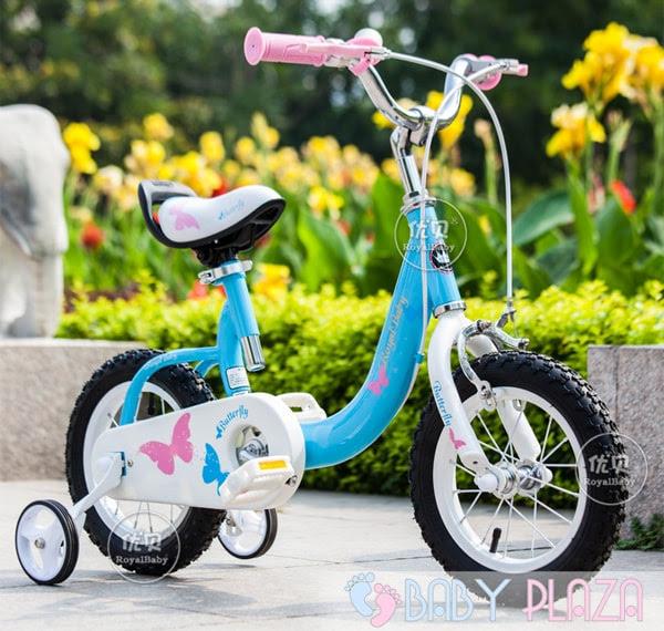 Xe đạp RoyalBaby RB-19 1