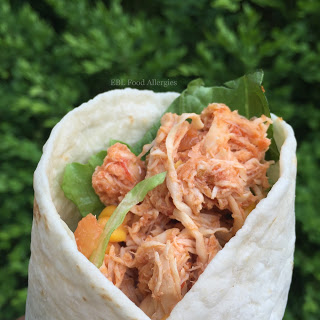 Easy Allergy-Friendly Slow-Cooker Salsa Chicken