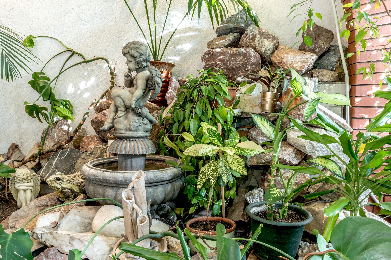 Райский сад в Новосибирске