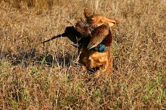 Photo: Puma BLP-Training 2005
