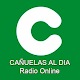 Cañuelas al Dia Radio Online Download on Windows
