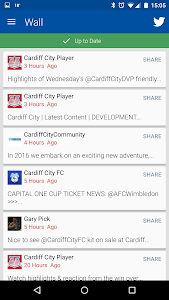 Cardiff City screenshot 4