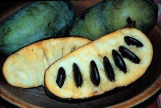 Photo: pawpaws . . .