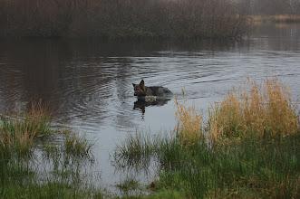 Photo: ik blijf lekker in het water