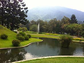 Photo: Cibodas botanical garden.