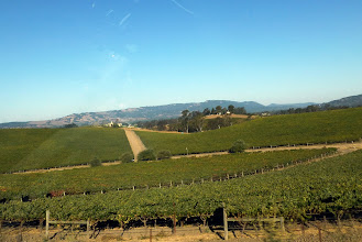Photo: California's second-most famous winery valley, we chose it over Napa for reasons that will soon be apparent.