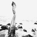 Posing Woman Live Wallpaper icon