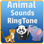 Real Animal Sounds Ringtones APK icon