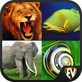 Animals Encyclopedia SMART App