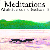Relax W/Whales & Beethoven 8