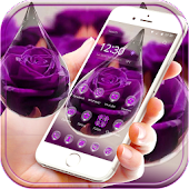 Water drop rose Theme purple