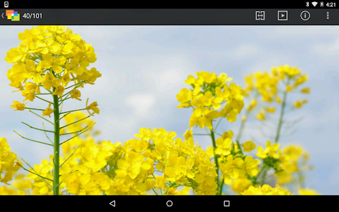 NIKON IMAGE SPACE- screenshot thumbnail