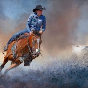 Barrel Rider by Rich Reynolds - Digital Art Things ( barrels, blue, barrel rider, horse, rodeo )