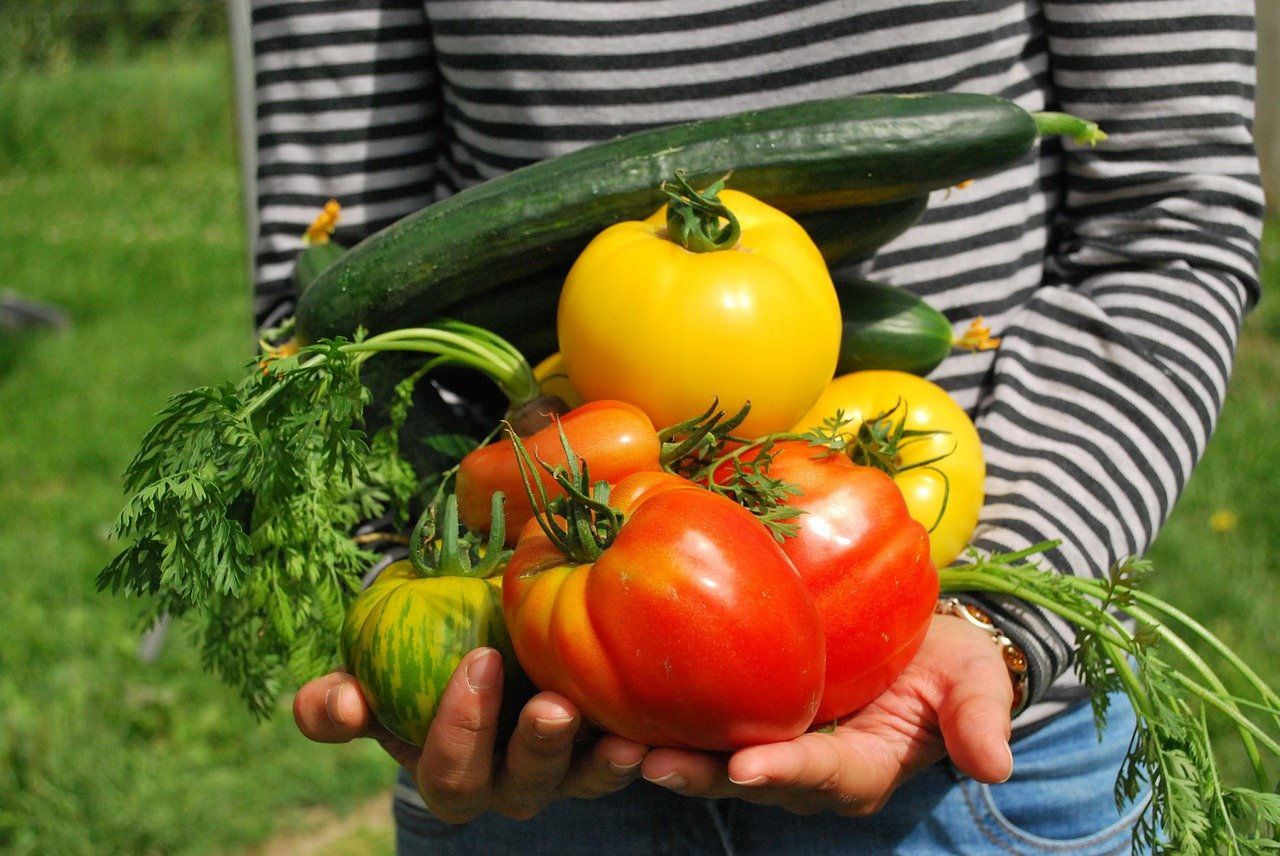 Companion Planting for a bountiful harvest