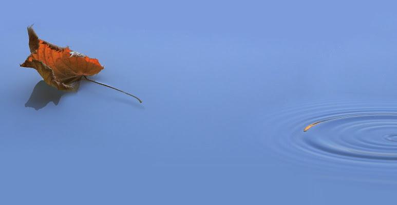 cerchi sull'acqua di roberto-copeta