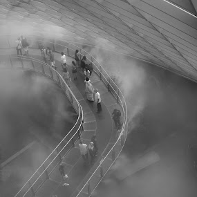 Mist by Han Yi Li - Novices Only Landscapes ( black and white, fog, cloud forest, gardens by the bay, singapore, mist )